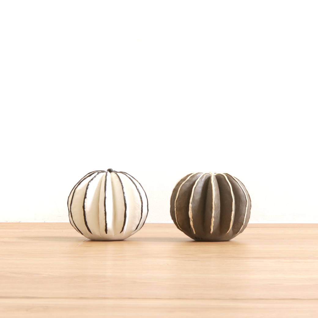 STUDIO.ZOK(スタジオゾック)陶植 - ペクチニフェラ Ceramic Botanical/セラミックボタニカル(ホワイト/ブラック)
